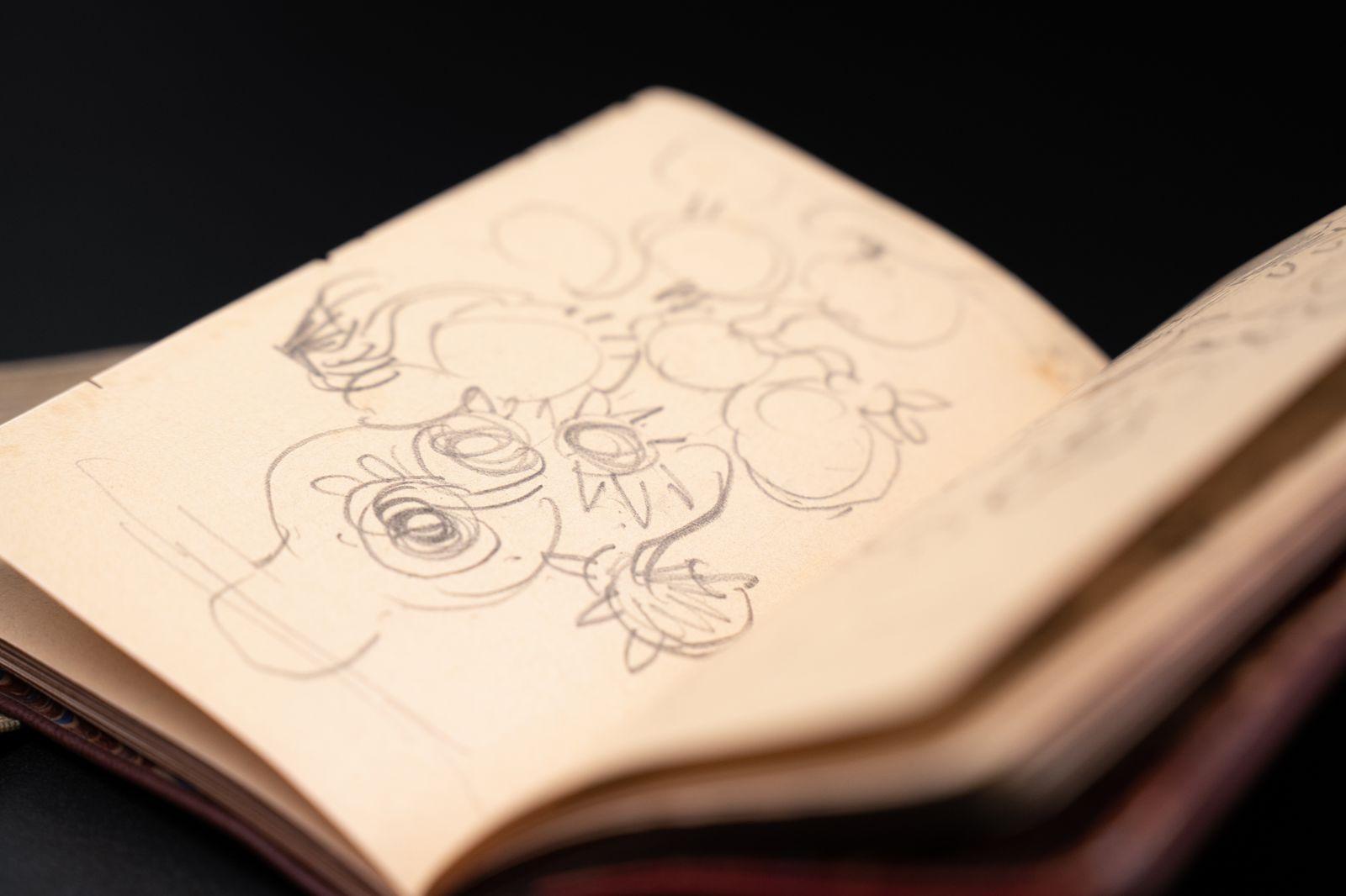 Vincent van Gogh the Sketchbooks - Detail 10.jpg