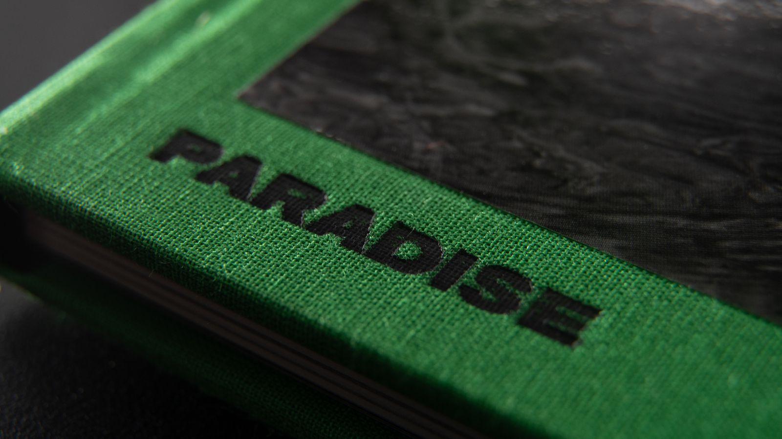 Paradise - Detail 1.jpg